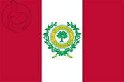 Bandeira do Raleigh
