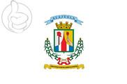 Bandera de Alajuela