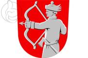 Bandeira do Lieksa