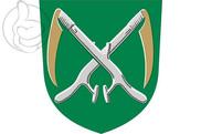 Bandeira do Alavieska