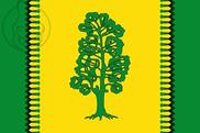 Bandera de Dehesas Viejas