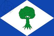Bandera de Noceda del Bierzo