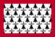 Bandera de Lemosín