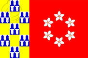 Bandera de Nava