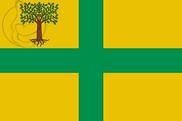 Bandera de Verea
