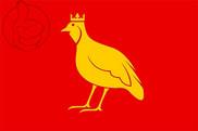 Bandera de Aunis