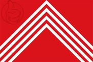 Flag of Brakel