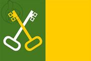 Bandera de Toa Baja