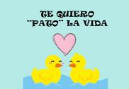 Bandera de Pato la vida