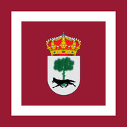 Flag of Muñico