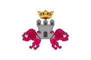 Bandera de Condado de Treviño