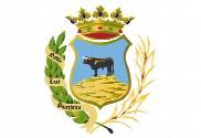 Flag of Montoro