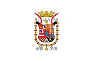 Bandiera di Illora