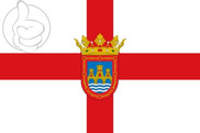 Bandera de Tudela