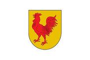 Bandera de Orexa