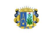 Bandera de Anguiano