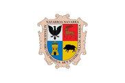 Bandera de Altsasu/Alsasua