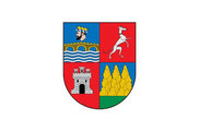 Bandera de Burgui/Burgi