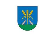 Bandera de Lizoáin-Arriasgoiti