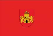 Bandera de Miranda de Arga