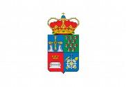 Bandera de San Martín del Rey Aurelio