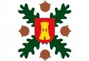 Bandera de Agallas