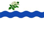 Bandera de Fuentesaúco de Fuentidueña