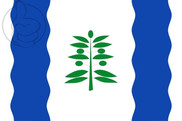 Bandera de Cinco Olivas