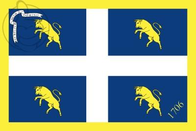 Bandera Torino