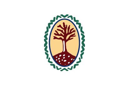 Bandera Vinebre