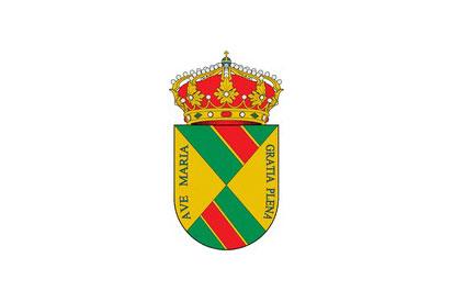 Bandera Real de San Vicente, El