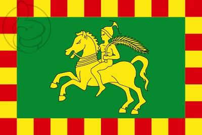 Bandera Comarca de Osona