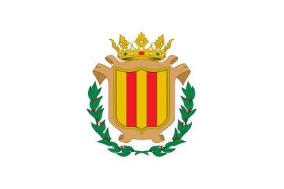 Bandera Puebla de San Miguel