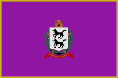 Bandera Santurtzi