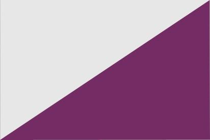 Bandera Torregamones