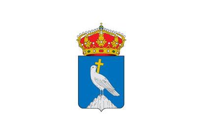 Bandera Castejón de Valdejasa