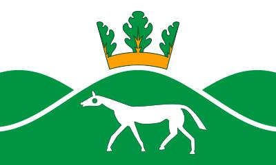 Bandera Pewsey