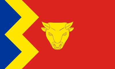 Bandera Birmingham