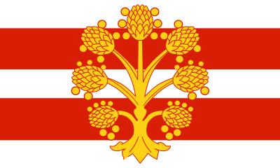 Bandera Westmorland