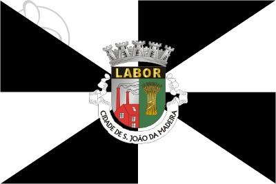 Bandera São João da Madeira