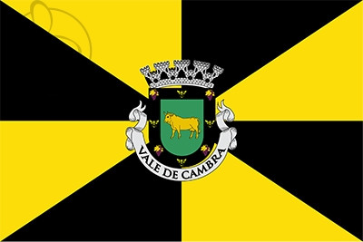 Bandera Vale de Cambra Municipality
