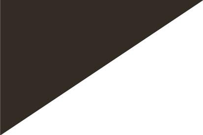 Bandera Dividida