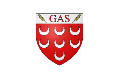 Bandera Gas