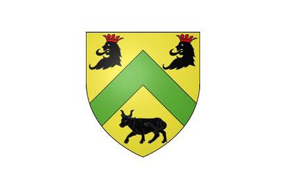 Bandera Renay