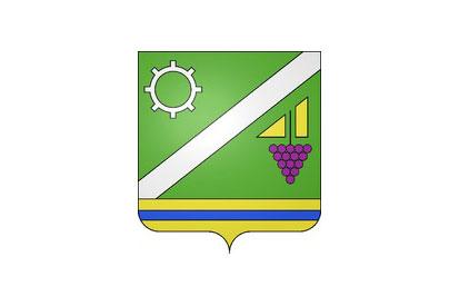 Bandera Saint-Jean-de-la-Ruelle