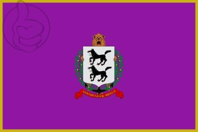 Bandera Santurce