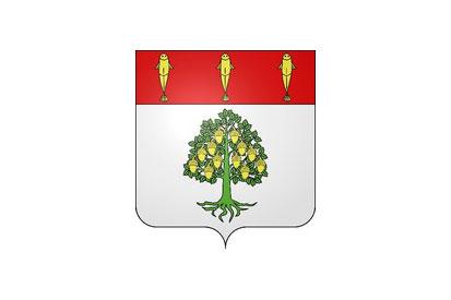 Bandera Binges