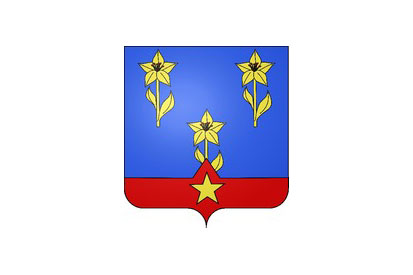 Bandera Héricy