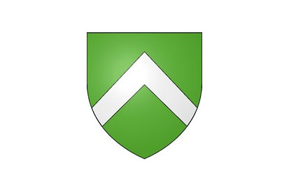 Bandera Linexert