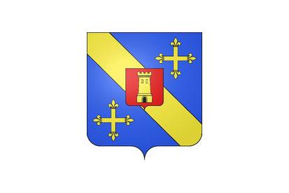 Bandera Savigny-en-Terre-Plaine